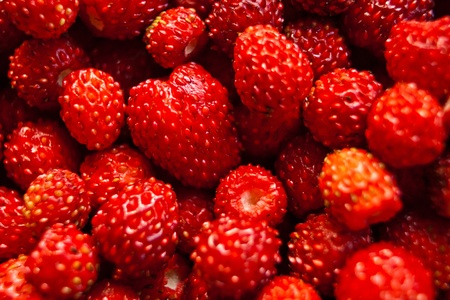 many fresh red strawberry