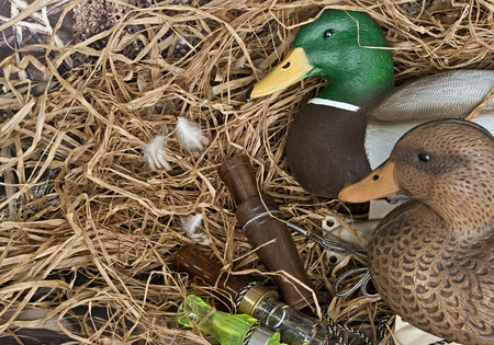 duck decoy with stuffed and some calls Stock Photo - 12525427