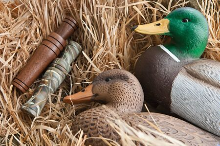 duck decoy with stuffed and some calls photo