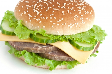 hamburger with meat and vegetables Stock Photo - 13899209