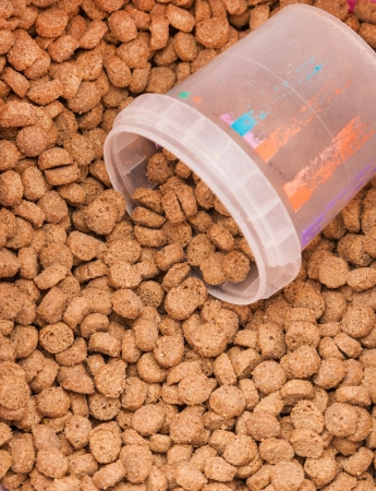 grained: dry brown grained pets food with measured glass