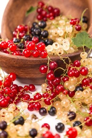 смородина различных цветов - красный, черный, белый Фото со стока