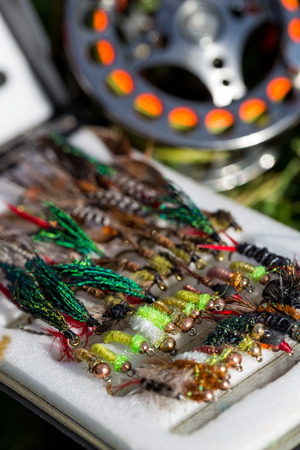 fishing equipment: fly fishing bugs and road with real on grass in sunlight with selective focus Stock Photo