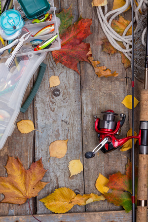 wobbler: fishing tackles reel, line, wobbler, lure on wooden board with leafs of autumn