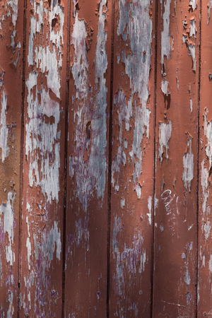 flaky: background of verical wooden door with flaky painted boards. material and abstract texture