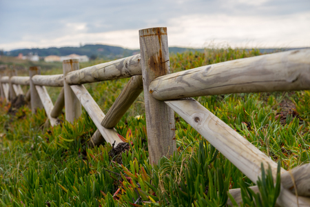 stakes: landscape atlantic coastline with wooden fance and succulent plants in cloudy day Stock Photo