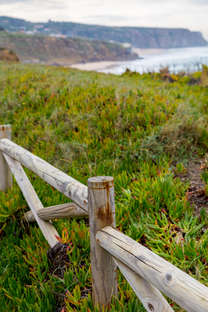 landscape atlantic coastline with wooden fance and succulent plants in cloudy day Stock Photo