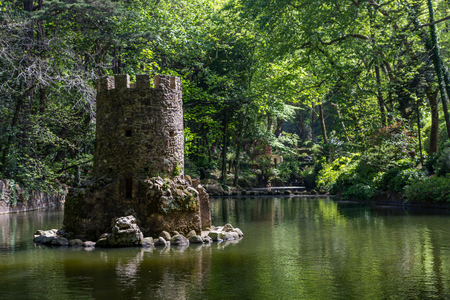 natural forest park Pena in Sintra, Portugal, with trees and stones
