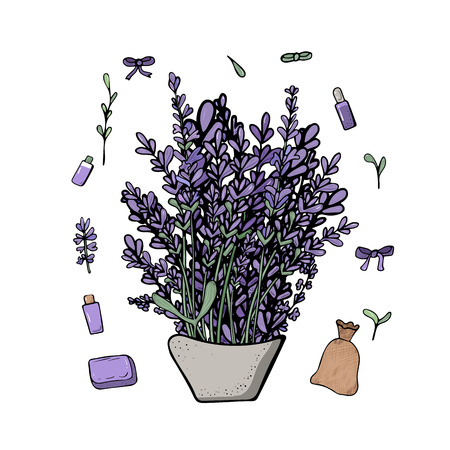 Lavender set composition in doodle style. Flowers elements isolated on white background. Vector illustration.