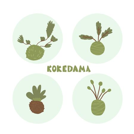 Kokedama set. Vector color illustration.