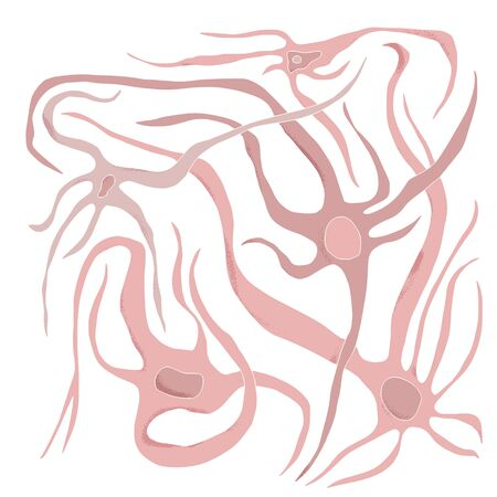 Neuron cells with long axons. Vector illustartion. Illustration