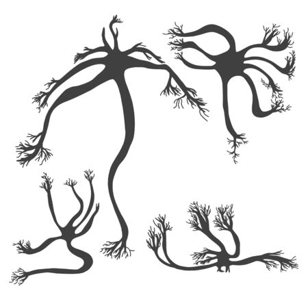 Neuron cells  silhouette with long axons. Vector illustartion. Illustration