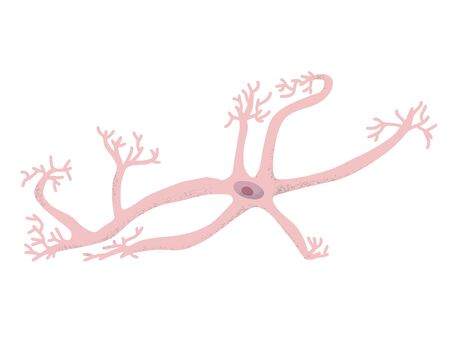 Neuron cell isolated. Brain cell with axones and dendrites. Vector illustartion. Illustration