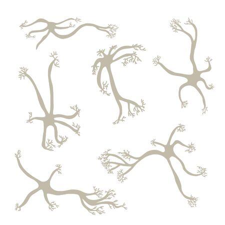 Neuron cells set. Collection of brain neurocyte. Vector illustartion.