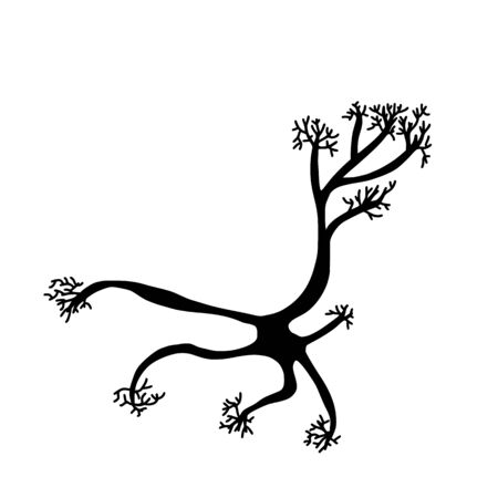 Neuron cell isolated. Brain silhouette cell with axones and dendrites. Vector illustartion.