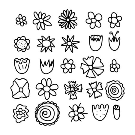 Set of doodle flower. Hand drawn botanic icons. Vector collection  illustration.