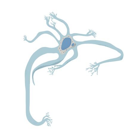 Neuron cell with long axons. Vector illustartion. Stock Illustratie