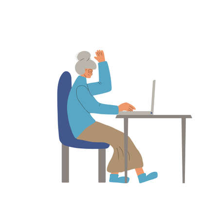 Video call. Interview online. Mature woman sitting on laptop and talking about job. Vecotor flat illustration. 일러스트