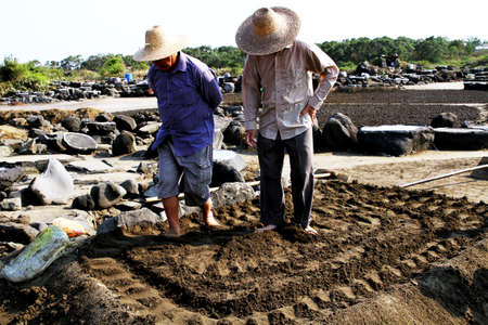 ancient tradition: La tradici�n antigua de la antigua sal sal Editorial