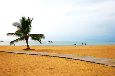 Sanya City, Hainan Province, cliff Bay beach and coconut tree.