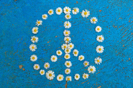 antiwar: Peace sign, peace symbol, peace design created of daisy flowers on textured blue background