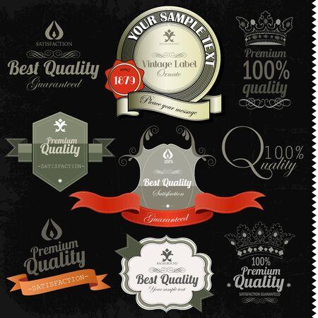 Vintage premium quality labels and inscriptions collection  Retro design
