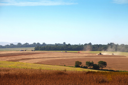 agricultural machinery: Agricultural machinery harvesting soybeans. - Mato Grosso State - Brazil
