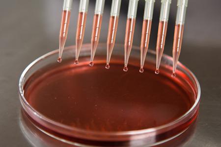 metodo cientifico: Gotas cayendo pipeta en el laboratorio.