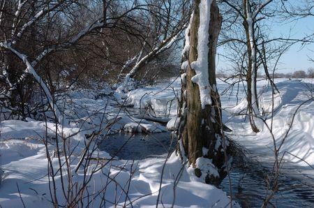 Illinois creek in winter