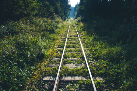endless: Endless railway in the forest.