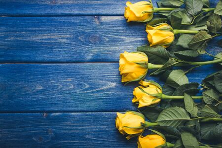 grunge wood: Yellow roses flowers on blue grunge wood. Stock Photo