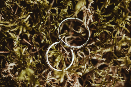 White gold wedding rings on moss forest ground background.