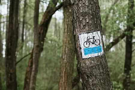 Señal indicadora de senderos para bicicletas hecha de pintura blanca y azul en la corteza de los árboles.