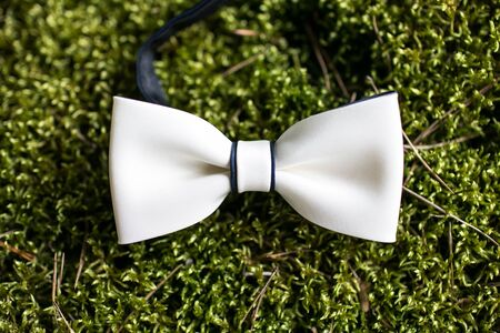 Wedding fashiod accesories background. White bow tie on green forest moss. 版權商用圖片