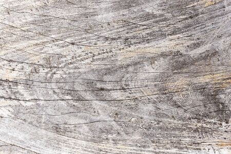 Gray grunge cracked wooden surface. Natural plank background. 免版税图像