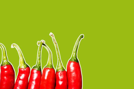 Red chili peppers isolated. Vibrant color chili pepper. Hot spicy food ingredient. Empty copy space vegetable background. Shiny tasty vegetables in row.