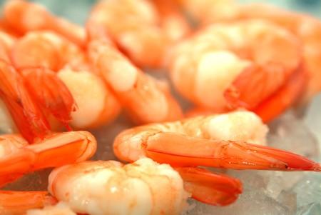 fresh king prawns on some ice ready to eat photo