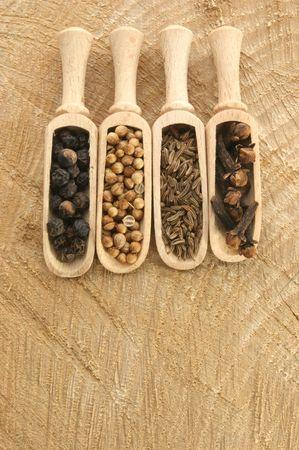 cuatro especias, pimienta, cilantro, clavo de olor y semillas de alcaravea Foto de archivo - 5050387