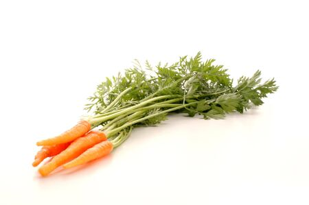 some healthy and fresh carrots from the garden Stock Photo - 5062933