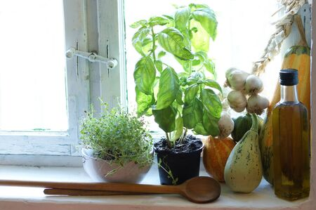 old country kitchen window with herbs, oil and pumpkin