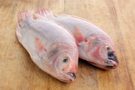 two fresh organic african tilapia on a timber board Stock Photo - 5813556
