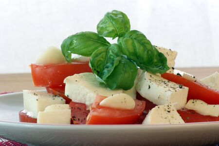 delicious mozzarella salad with fresh organic tomato Stock Photo - 5877996