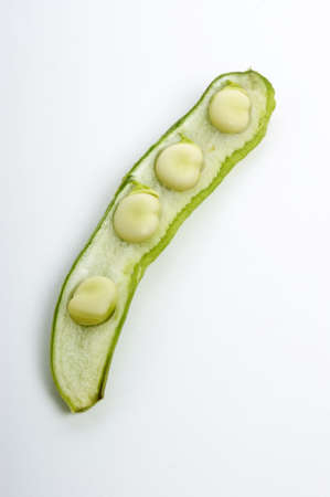 organic broad beans and a white background photo