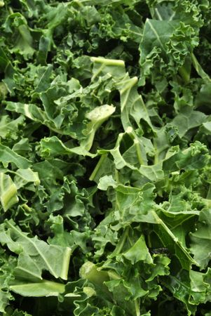 organic tender leaf curly kale washed and ready to cook