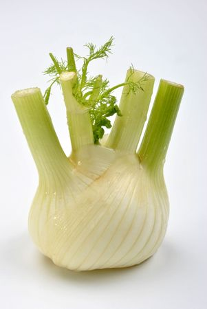one organic fennel and a white background