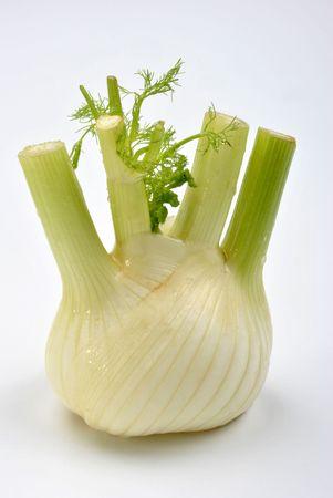 finocchio: un organico di finocchio e uno sfondo bianco