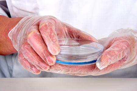 blue liquid and petri dish in a laboratory