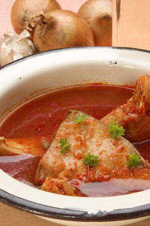 Carp fish soup in an old enamel bowl Stock Photo - 9463397