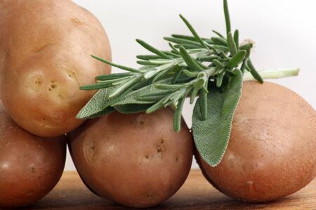 Boiled potatoes with rosemary and sage Stock Photo - 10278915