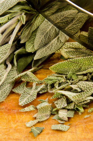 sage is chopped with a knife cradle Stock Photo - 13086121